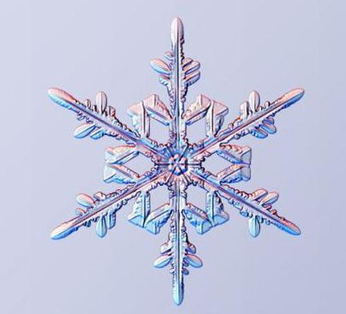 تصاویر دنا پلاس (تصاویر) نمای خارقالعاده از دانههای برف