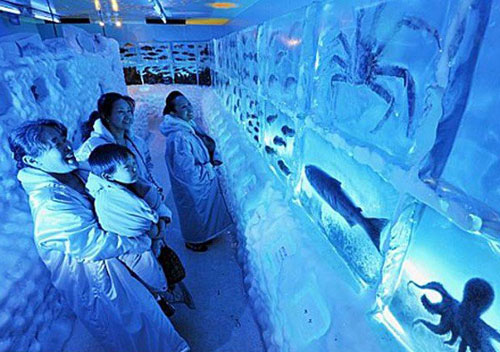 آکواریوم یخی در کسنوما در ژاپن