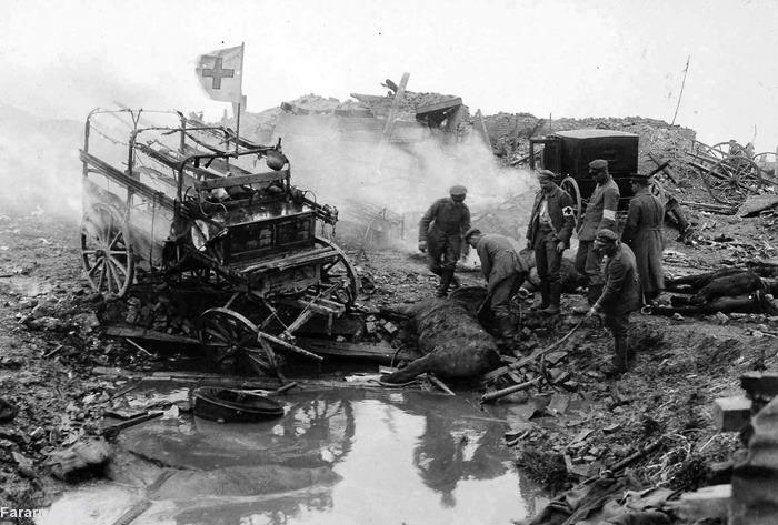 (تصاویر) جنگ جهانی اول؛ حیوانات جنگی