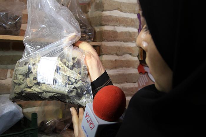 (تصاویر) کشف اسکلت 5هزار ساله در تهران