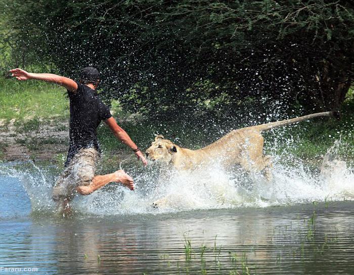 (تصاویر) دوستی مرد جوان با شیر