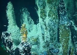 کشف موجودات فضایی مرموز در اعماق دریا
