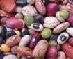 قیمت حبوبات در بازار تهران