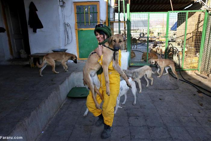 مرکز نگهداری از حیونات وفا قیمت سگ فروش سگ دختر تهرانی