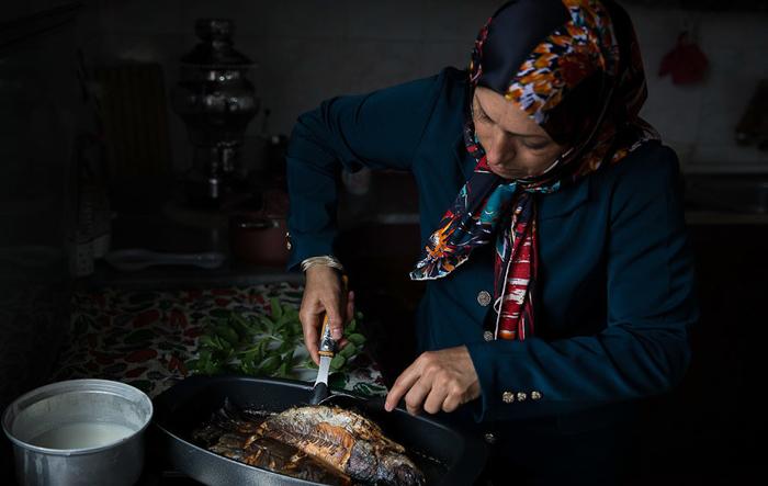 (تصاویر) پرورش ماهی قزلآلا در منزل
