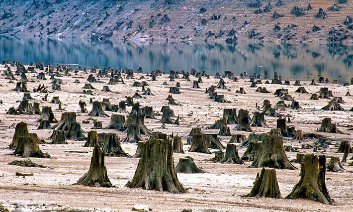 (تصاویر) جدال انسان با طبیعت