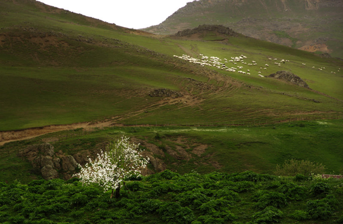 (تصاویر) مناظر بهاریِ سوباتان