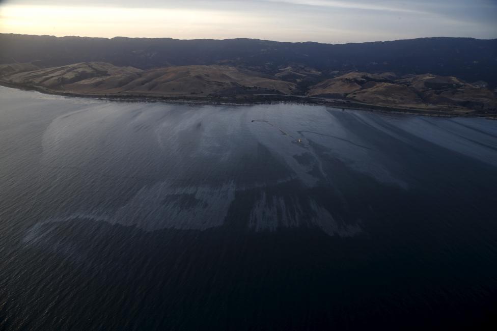 (تصاویر) آلودگی نفتی در سواحل کالیفرنیا