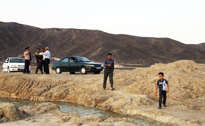 (تصاویر) زندهشدن گاوخونی پس از 10سال