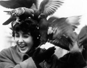 (تصاویر) آلبوم دیدهنشده از الیزابت تیلور