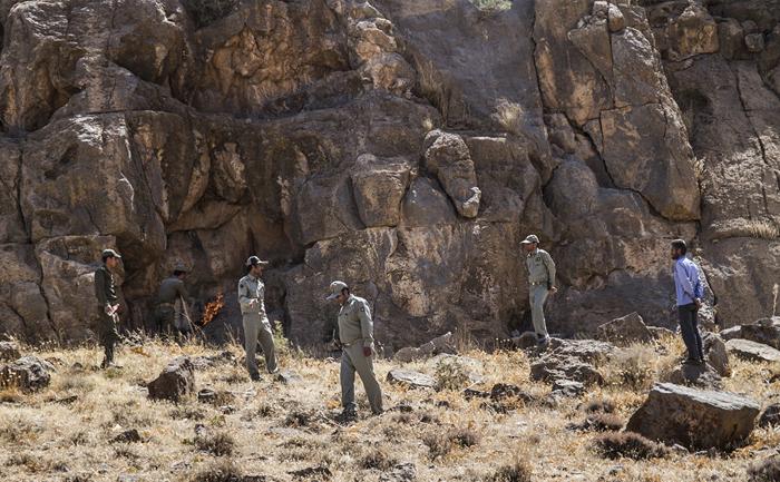 (تصاویر) طاعون نشخوارکنندگان در