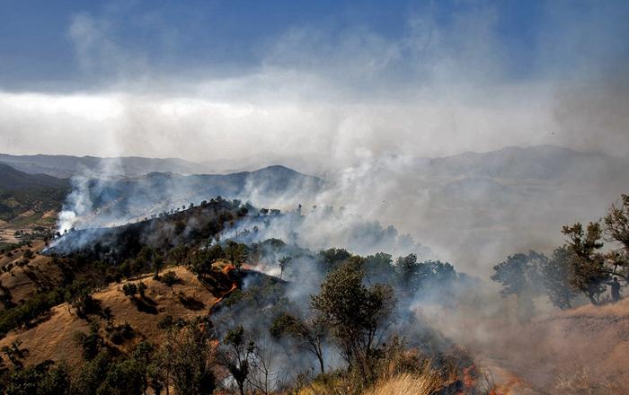 (تصاویر) 150هکتار جنگل در مریوان سوخت