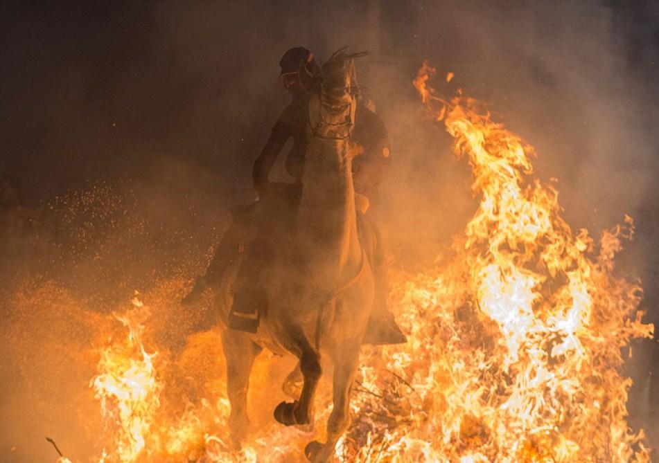 (تصاویر) جدال اسب با آتش برای تطهیر