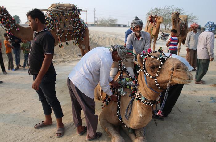(تصاویر) عروسی سنتی در قشم