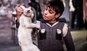 سفر به سوریهی اسد