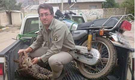 24ماه زندان، مجازات شکارچیان یک توله پلنگ