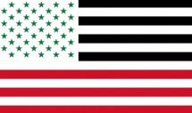 آمریکای عزیز، شبیه به کشورهای عربی شدهای!