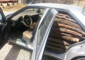 کشف یک تن و ۵۰۰ کیلوگرم چوب جنگلی قاچاق