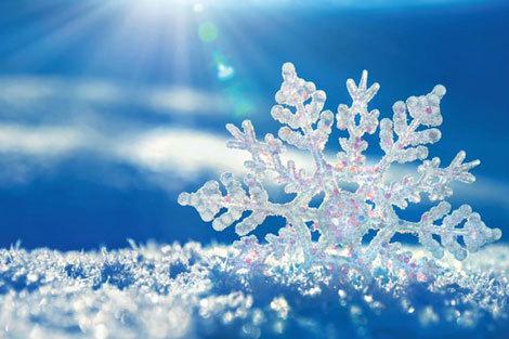 اشکال مختلف دانههای برف