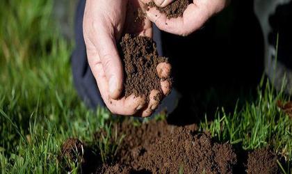 کشف گونه جدیدی از آنتی بیوتیکها در خاک