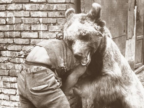 (تصاویر) معرکهگیری با خرس در تهران قدیم