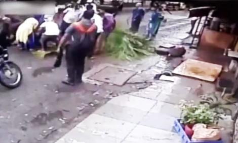 (ویدئو) سقوط ناگهانی درخت روی یک زن