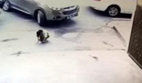 (ویدیو) زیر گرفتن کودک جلوی درب بیمارستان