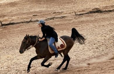 (تصاویر) رویای پرورش اسب