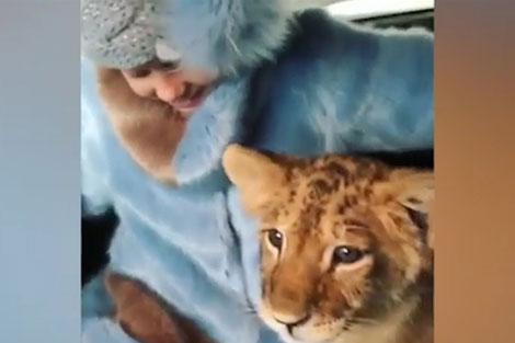 رانندگی ثروتمند روس با شیر و خرس وحشی!