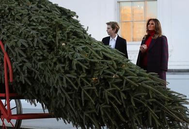 (تصاویر) استقبال ملانیا ترامپ از درخت کریسمس کاخ سفید