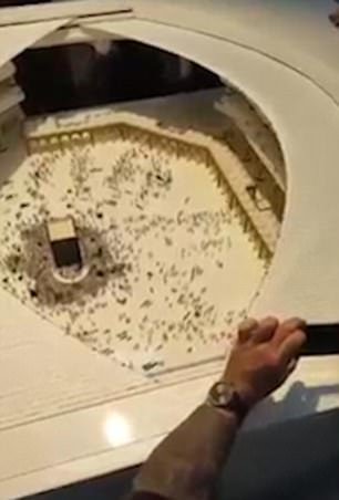 (تصاویر) عربستان کعبه را می پوشاند!