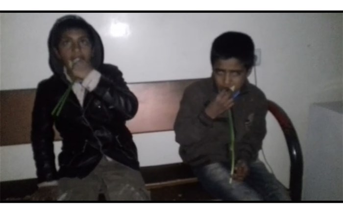 (ویدئو) خوراندن گُل به کودکان گلفروش در کرمان!