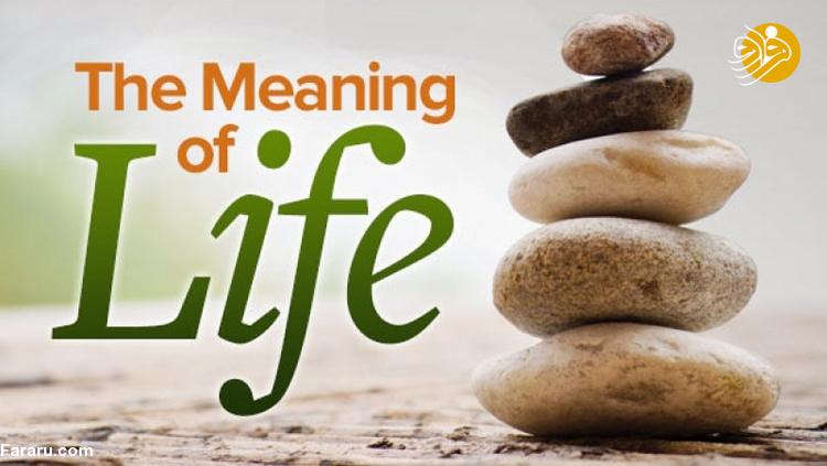 عشق و خوشبختی دو رقیب معنای زندگی
