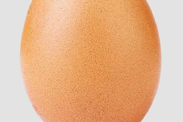 عکس یک تخم مرغ پرلایکترین عکس اینستاگرام شد!