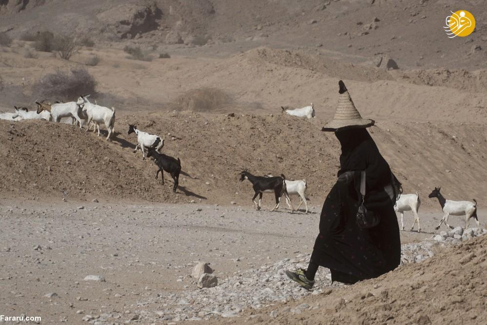 (تصاویر) زنان عجیب در بیابانهای یمن