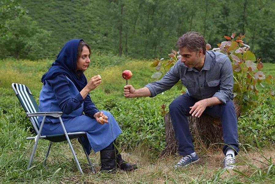 فیلم «ناگهان درخت»؛ نقد و بررسی و هرآنچه باید درباره آن بدانید