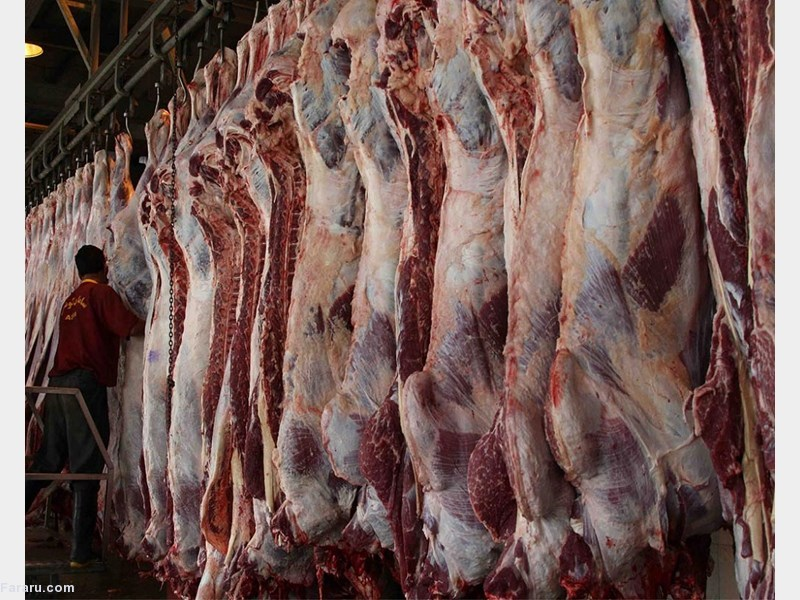 آغاز فروش اینترنتی گوشت تنظیم بازاری / هر کد پستی ماهانه سه کیلوگرم