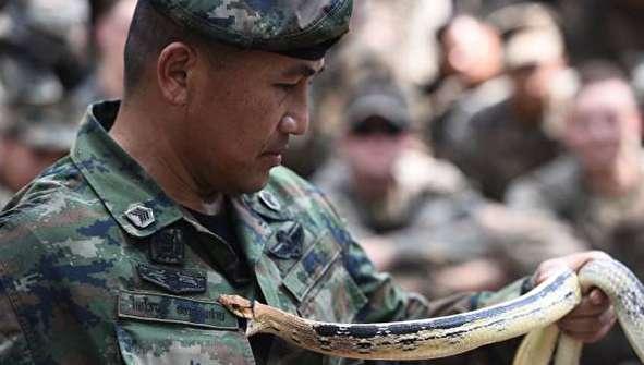 (تصاویر) خوردن مار و عقرب توسط نظامیان آمریکایی