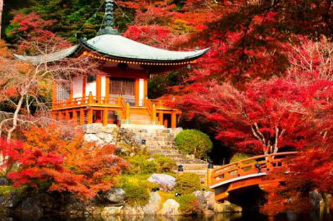 منطقه گردشگری کویاسان ژاپن