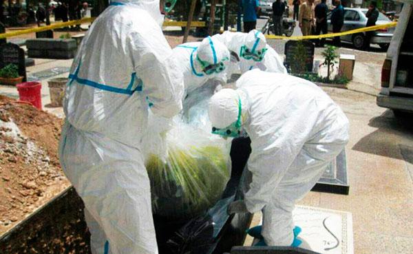 سر و کله تب کریمه کنگو دوباره در ایران پیدا شد