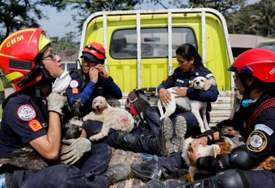 (تصاویر) نجات مفقودین فوران آتشفشان مرگبار گواتمالا