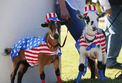 (تصاویر) آمریکاییها چطور روز استقلال کشورشان را جشن میگیرند؟
