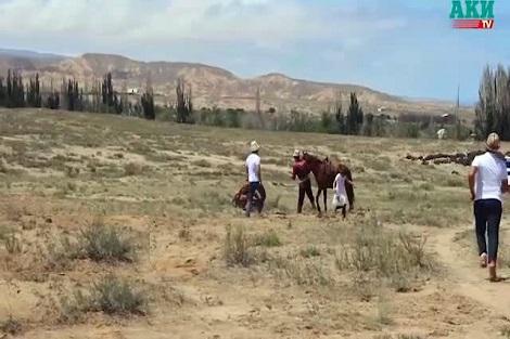 حمله عقاب به دختر بچه