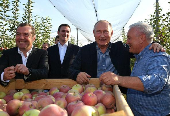 (تصاویر) گشت و گذار پوتین و مدودف در باغ سیب