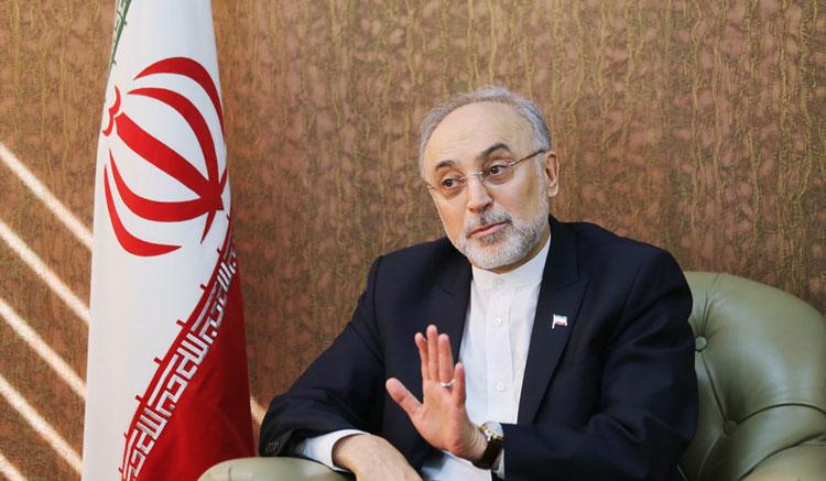 صالحی: از سازمان انرژی اتمی هیچ سندی بیرون نرفته است