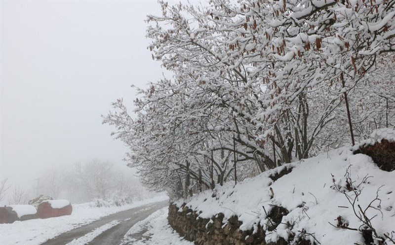 آخرین وضعیت راهها؛ بارش و باران در جادههای ۸ استان