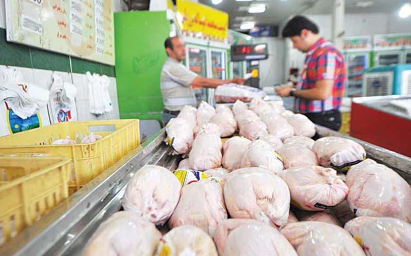 آخرین تحولات بازار مرغ؛ قیمت دو نرخی مرغ در بازار