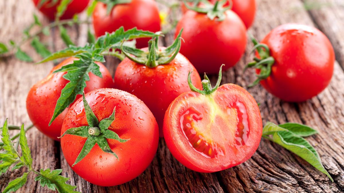 علت گرانی گوجهفرنگی اعلام شد