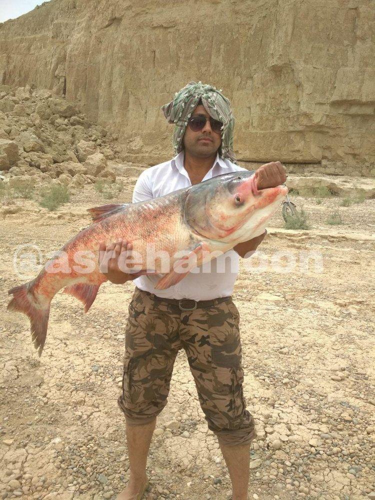 (تصویر) ماهی ۲۰ کیلویی؛ هدیه باران به صیاد سیستان و بلوچستانی