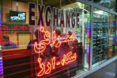 روایتی از هفت روز جهنمی در بازار ارز
